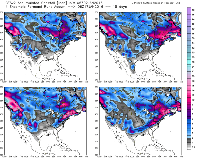 Climate Forecast System - Potential Snowfall through January 20th; image courtesy, Weatherbell.com